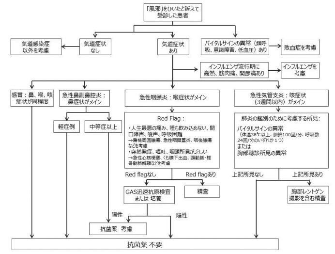 急性気道感染症の診断および治療のフローチャート